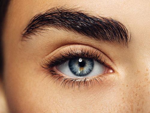 docteur adjadj sourcil botox toxine botulique acide hyaluronique lipofilling injection graisse transfert autologue lifting tempe rajeunissement visage esthétique